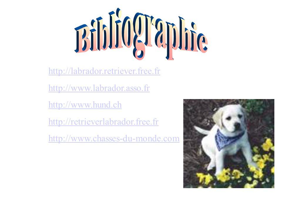 Bibliographie http://labrador.retriever.free.fr