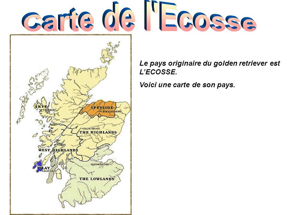 Carte de l Ecosse Le pays originaire du golden retriever est L'ECOSSE.