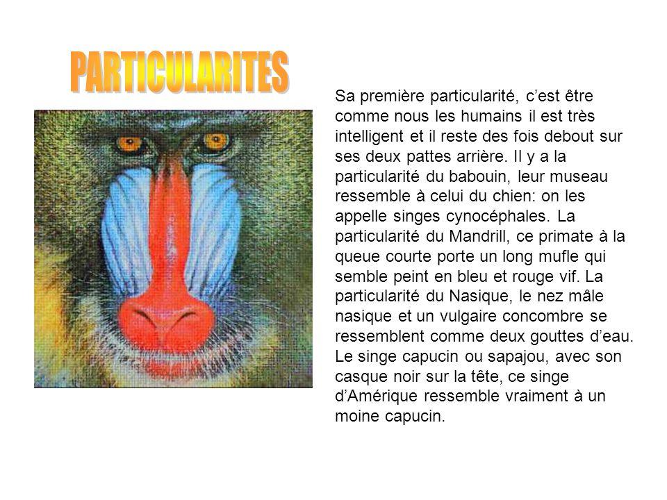 PARTICULARITES