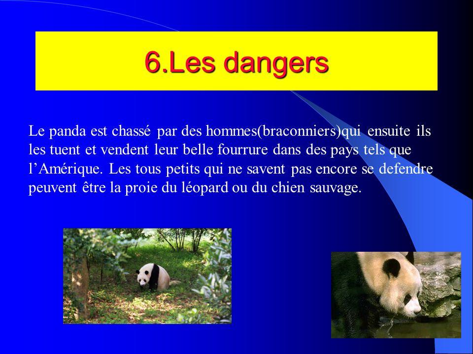 6.Les dangers