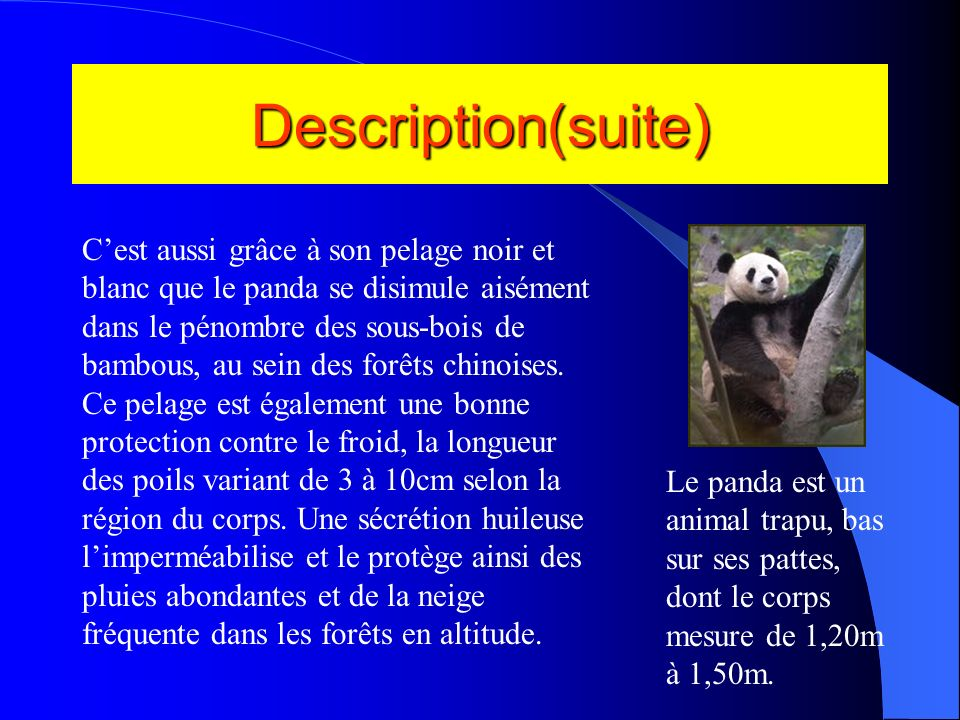 Description(suite)