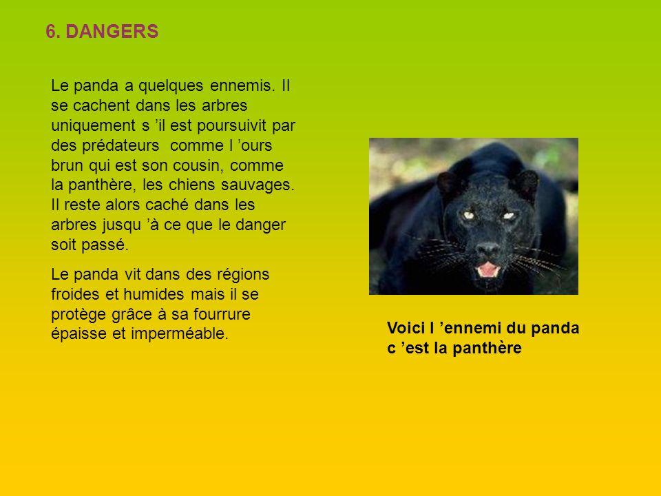 6. DANGERS