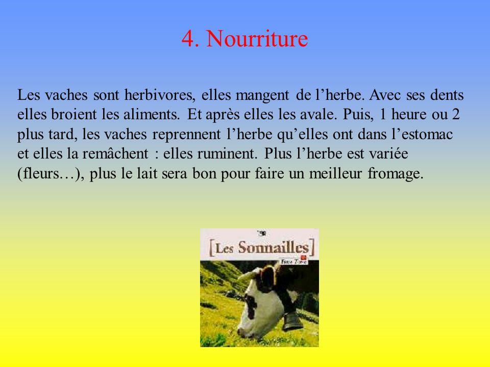4. Nourriture