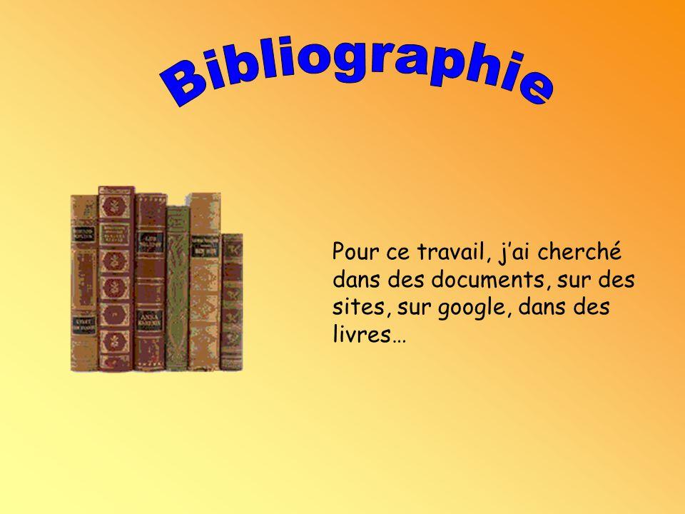 Bibliographie Pour ce travail, j'ai cherché dans des documents, sur des sites, sur google, dans des livres…