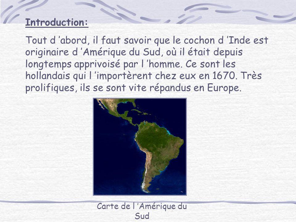 Carte de l 'Amérique du Sud