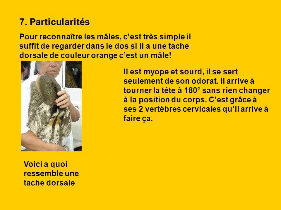 7. Particularités