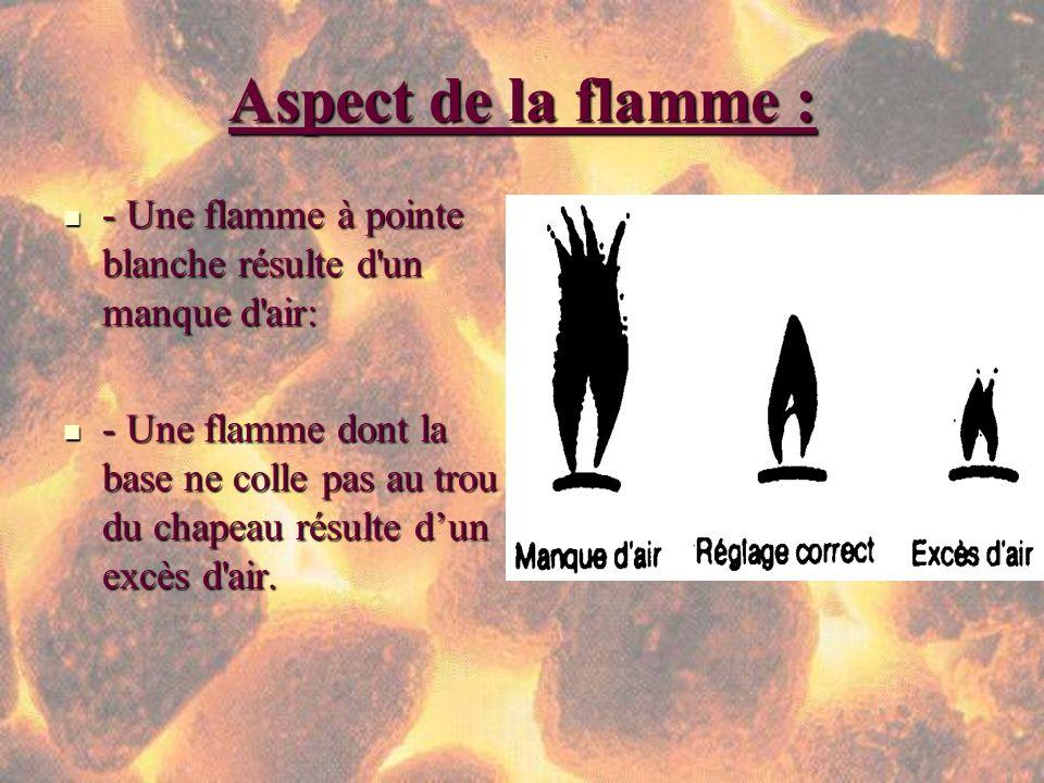 Aspect de la flamme : - Une flamme à pointe blanche résulte d un manque d air: