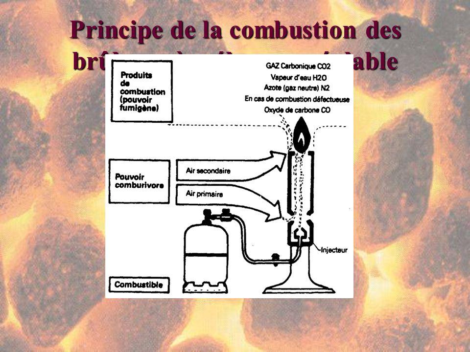 Principe de la combustion des brûleurs à mélange préalable