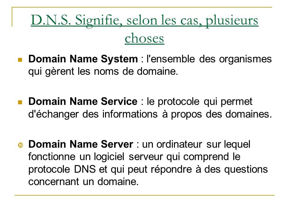 D.N.S. Signifie, selon les cas, plusieurs choses
