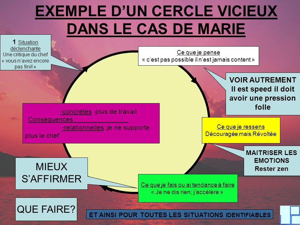 EXEMPLE D'UN CERCLE VICIEUX DANS LE CAS DE MARIE