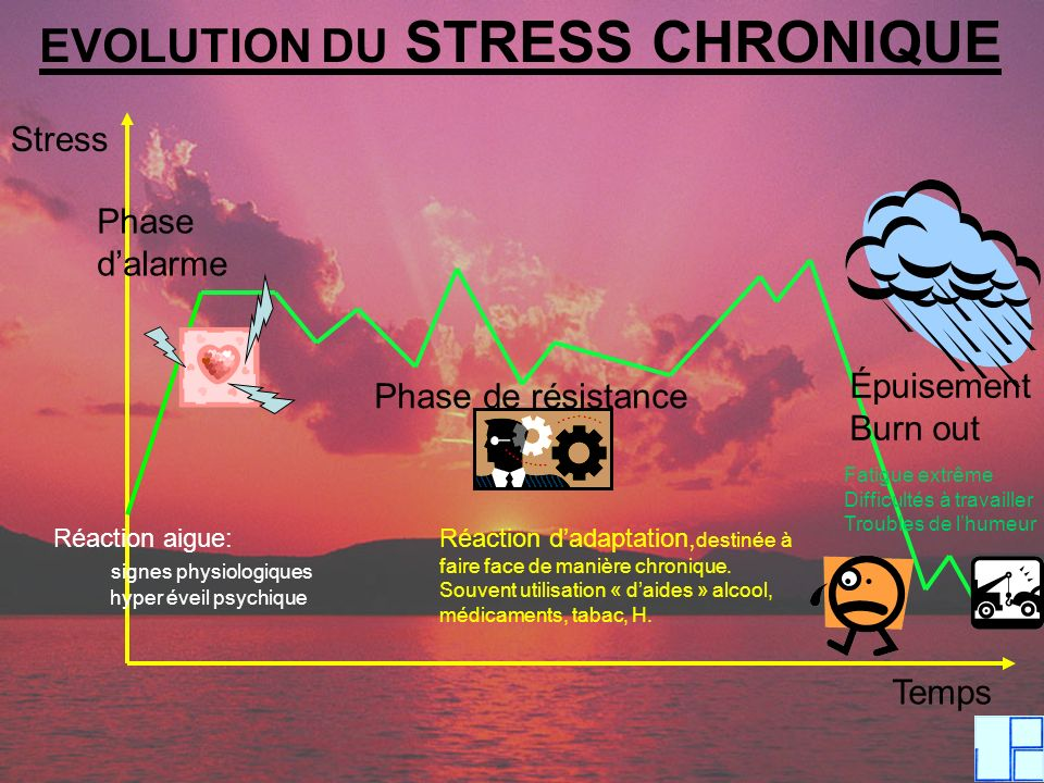 EVOLUTION DU STRESS CHRONIQUE