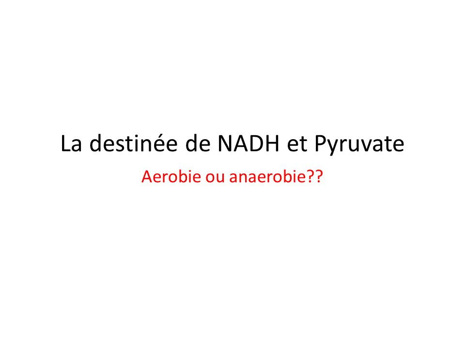 La destinée de NADH et Pyruvate Aerobie ou anaerobie
