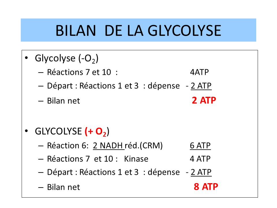 BILAN DE LA GLYCOLYSE Glycolyse (-O2) GLYCOLYSE (+ O2)
