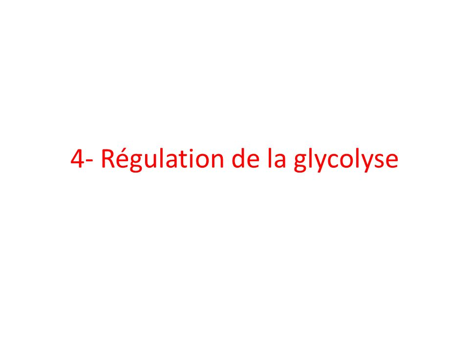 4- Régulation de la glycolyse