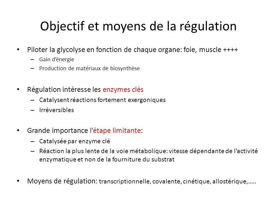 Objectif et moyens de la régulation
