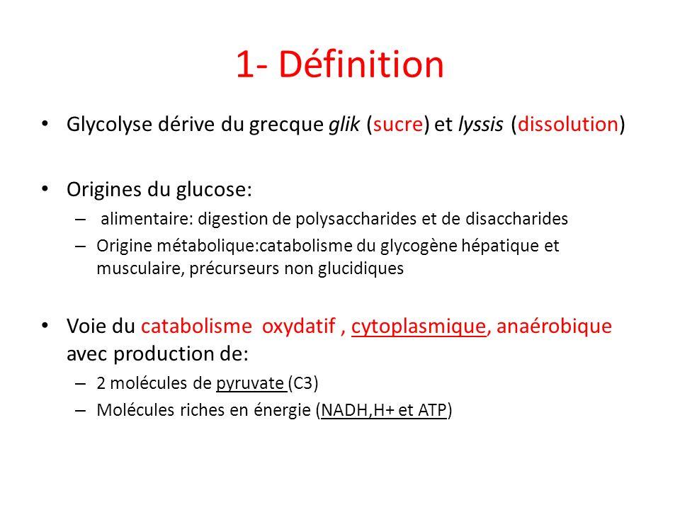 1- Définition Glycolyse dérive du grecque glik (sucre) et lyssis (dissolution) Origines du glucose: