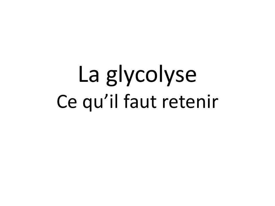 La glycolyse Ce qu'il faut retenir