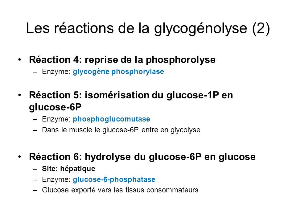 Les réactions de la glycogénolyse (2)