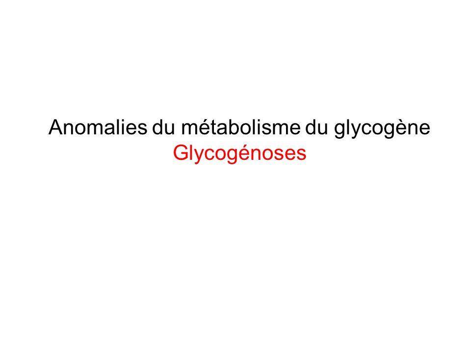 Anomalies du métabolisme du glycogène Glycogénoses