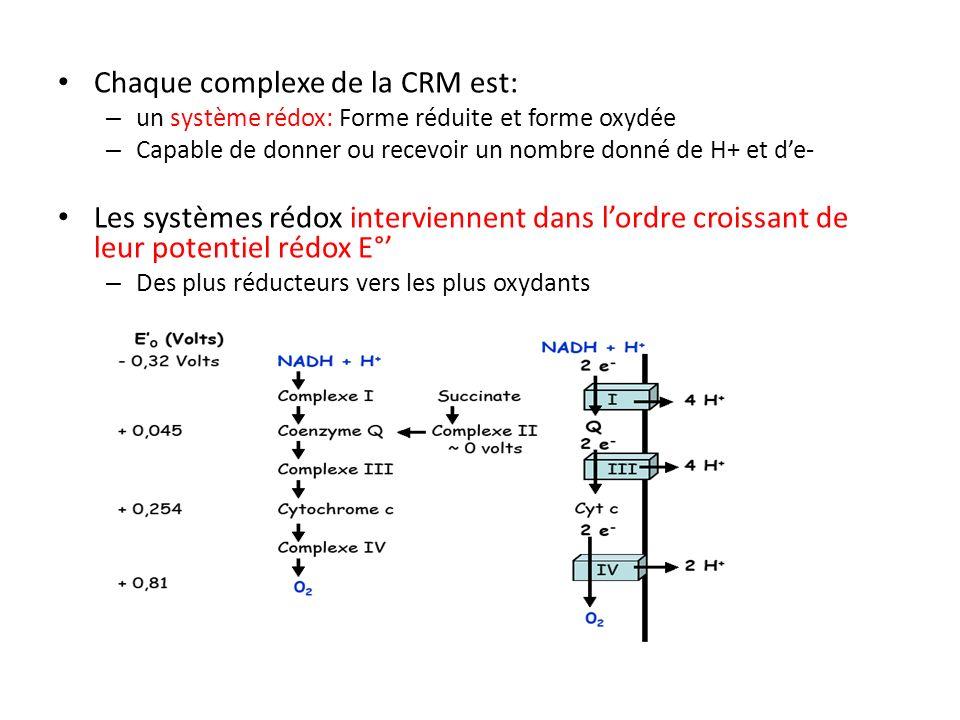 Chaque complexe de la CRM est: