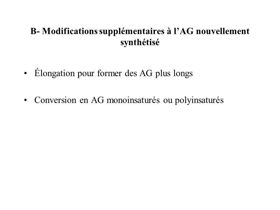 B- Modifications supplémentaires à l'AG nouvellement synthétisé