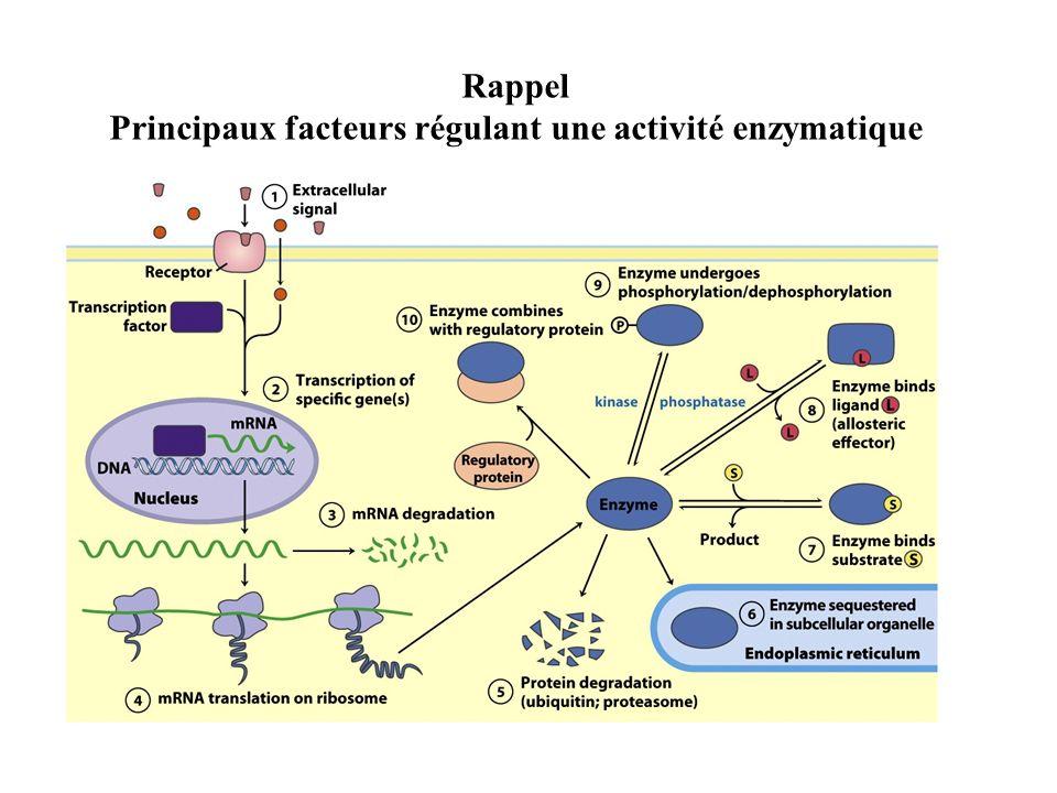 Principaux facteurs régulant une activité enzymatique