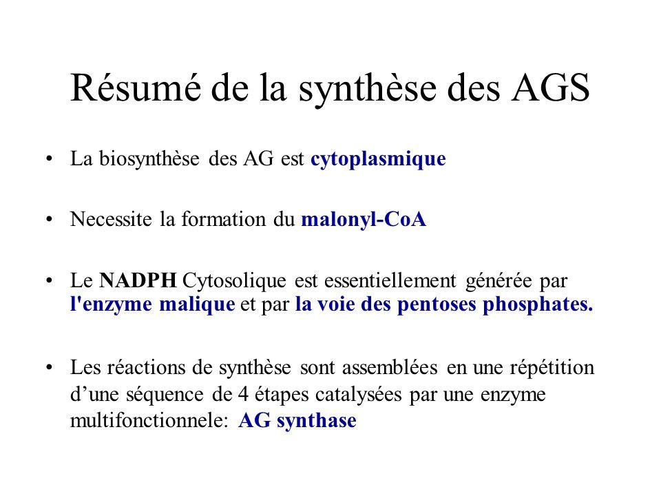 Résumé de la synthèse des AGS