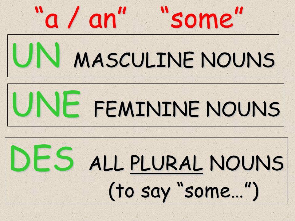 UN MASCULINE NOUNS UNE FEMININE NOUNS DES ALL PLURAL NOUNS