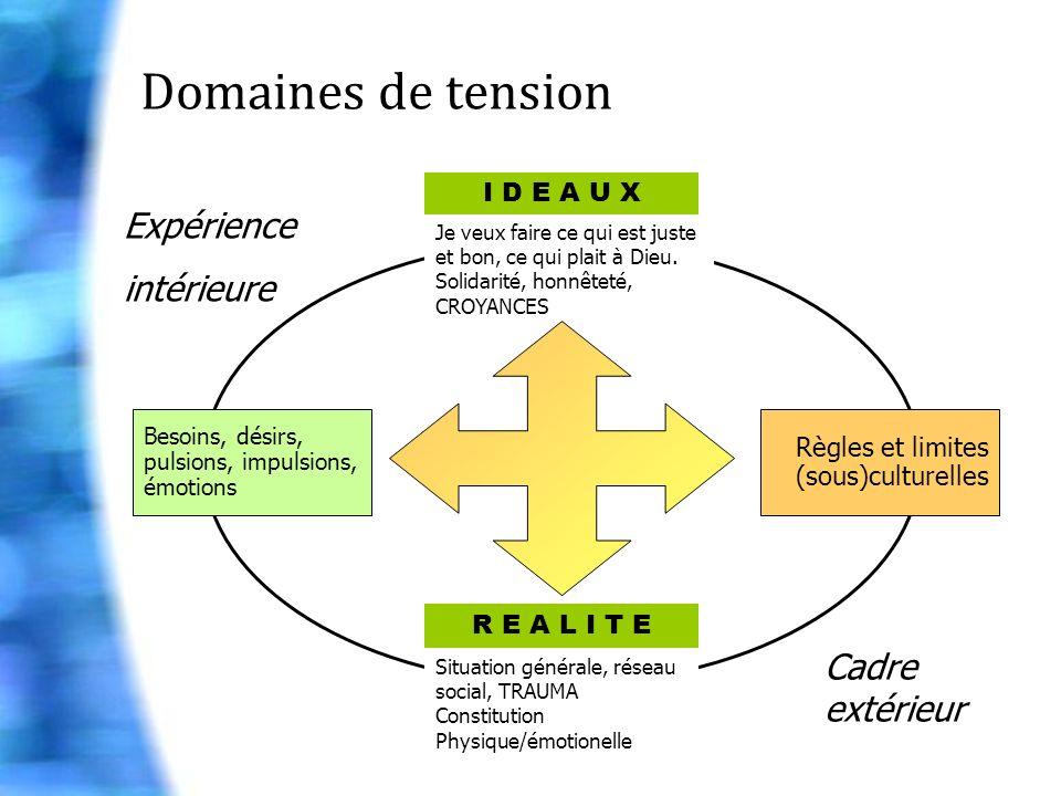 Domaines de tension Expérience intérieure Cadre extérieur I D E A U X