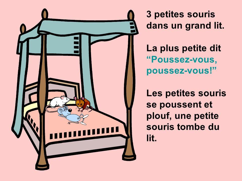 3 petites souris dans un grand lit.