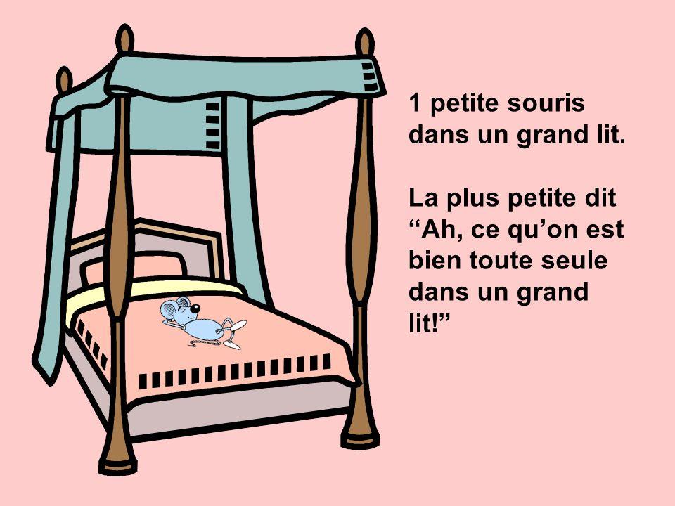 1 petite souris dans un grand lit.