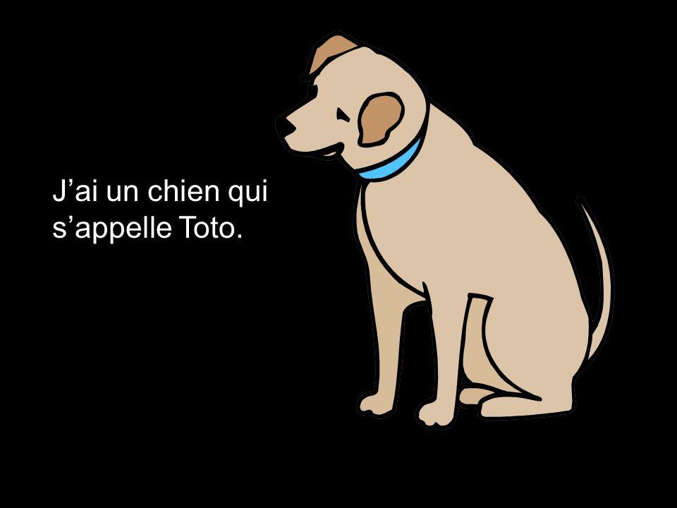 J'ai un chien qui s'appelle Toto.