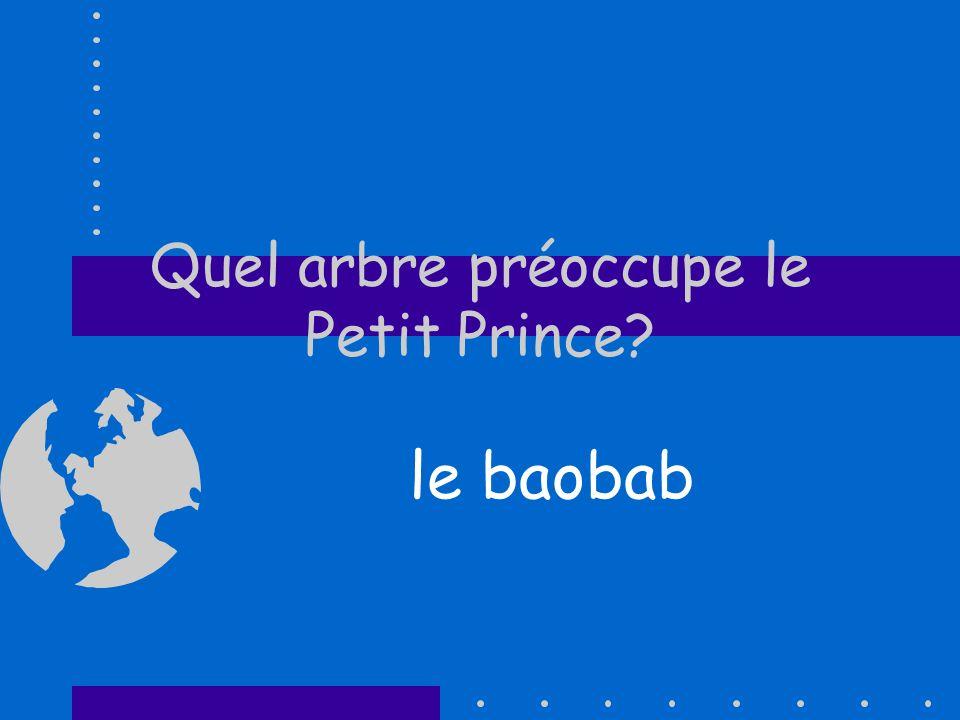 Quel arbre préoccupe le Petit Prince