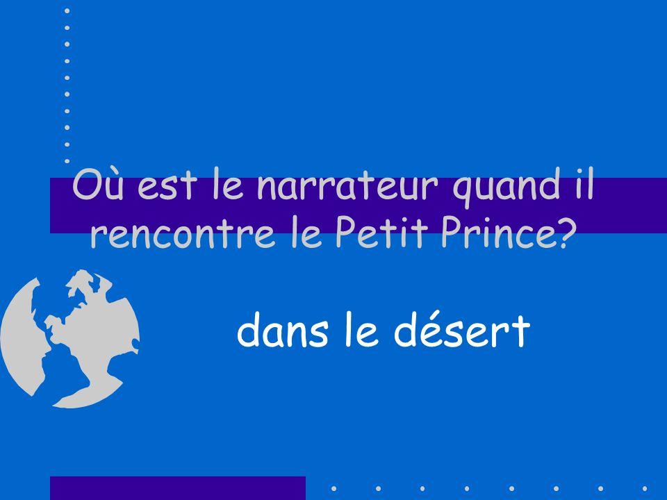 Où est le narrateur quand il rencontre le Petit Prince
