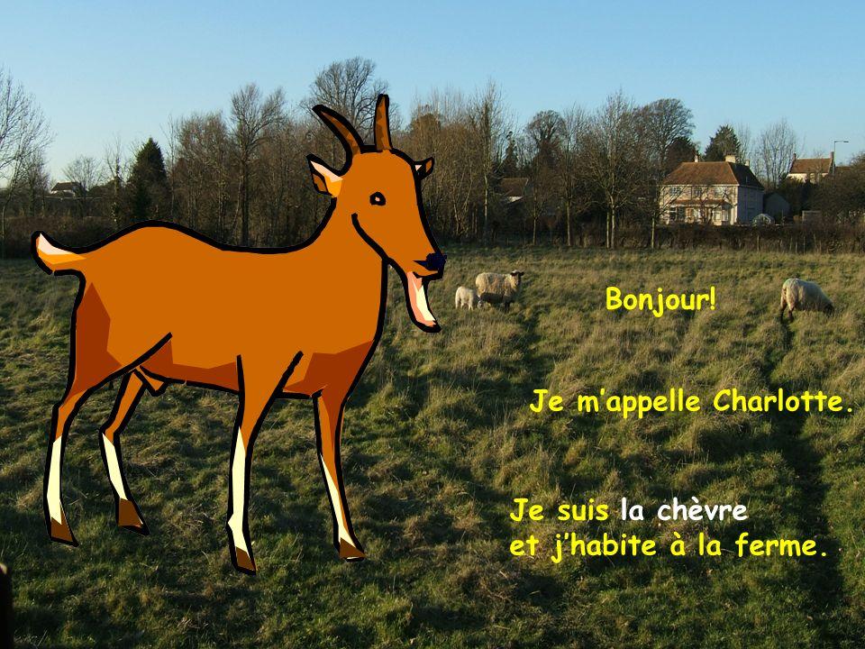 Bonjour! Je m'appelle Charlotte. Je suis la chèvre et j'habite à la ferme.