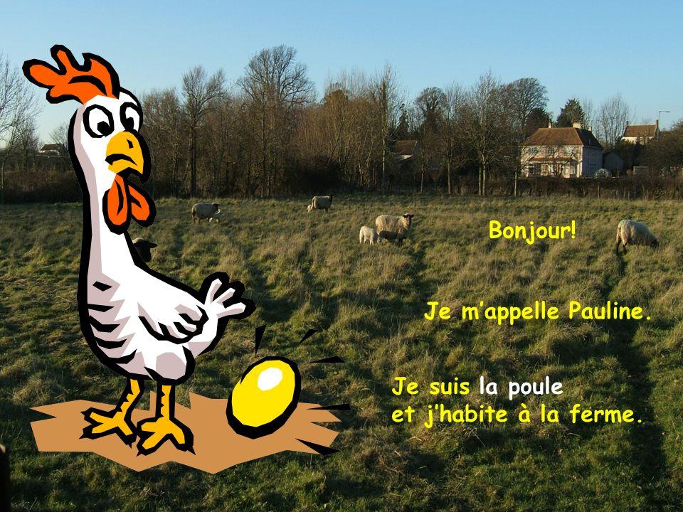 Bonjour! Je m'appelle Pauline. Je suis la poule et j'habite à la ferme.