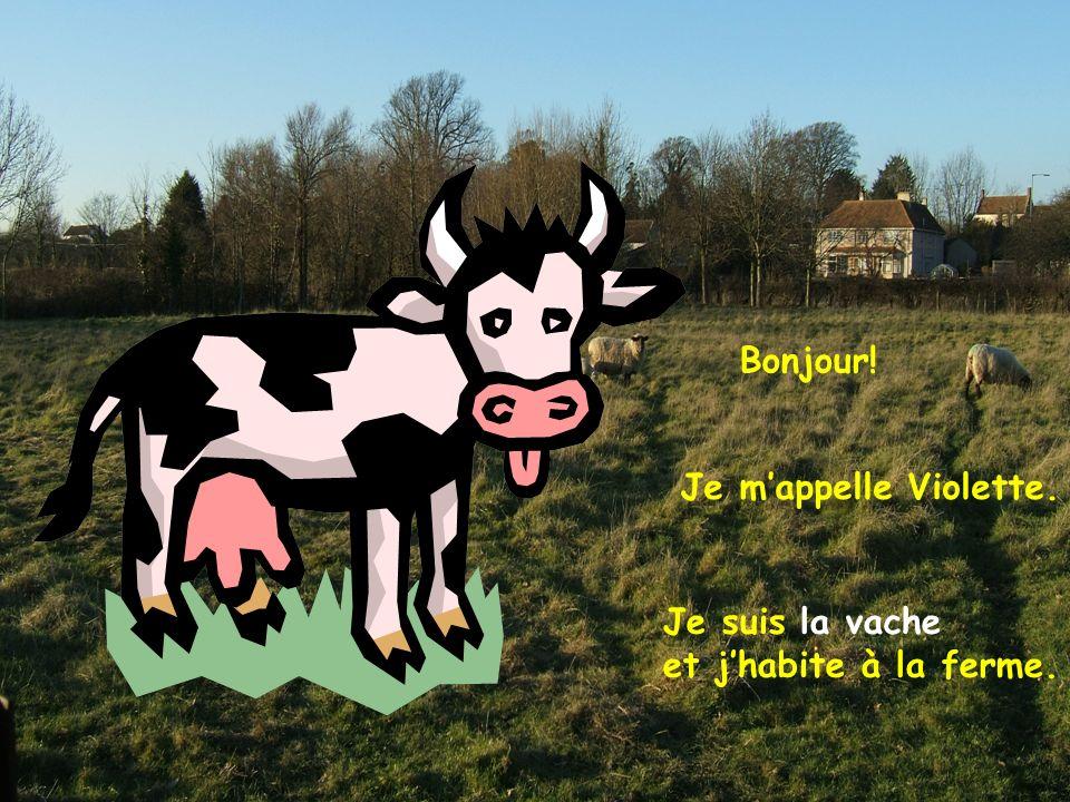 Bonjour! Je m'appelle Violette. Je suis la vache et j'habite à la ferme.
