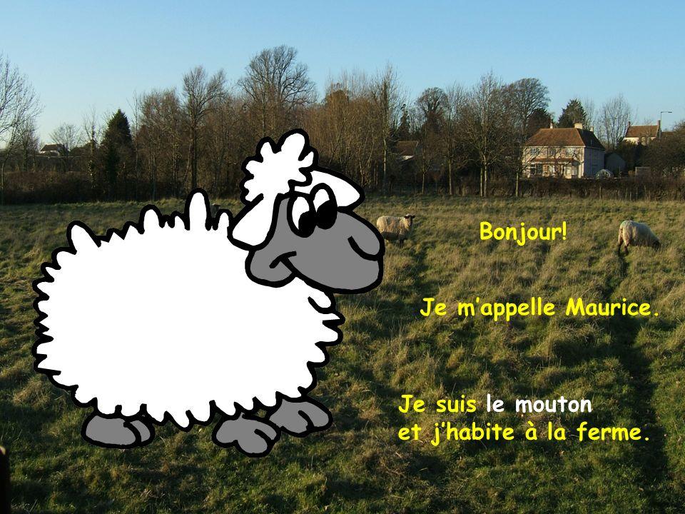 Bonjour! Je m'appelle Maurice. Je suis le mouton et j'habite à la ferme.