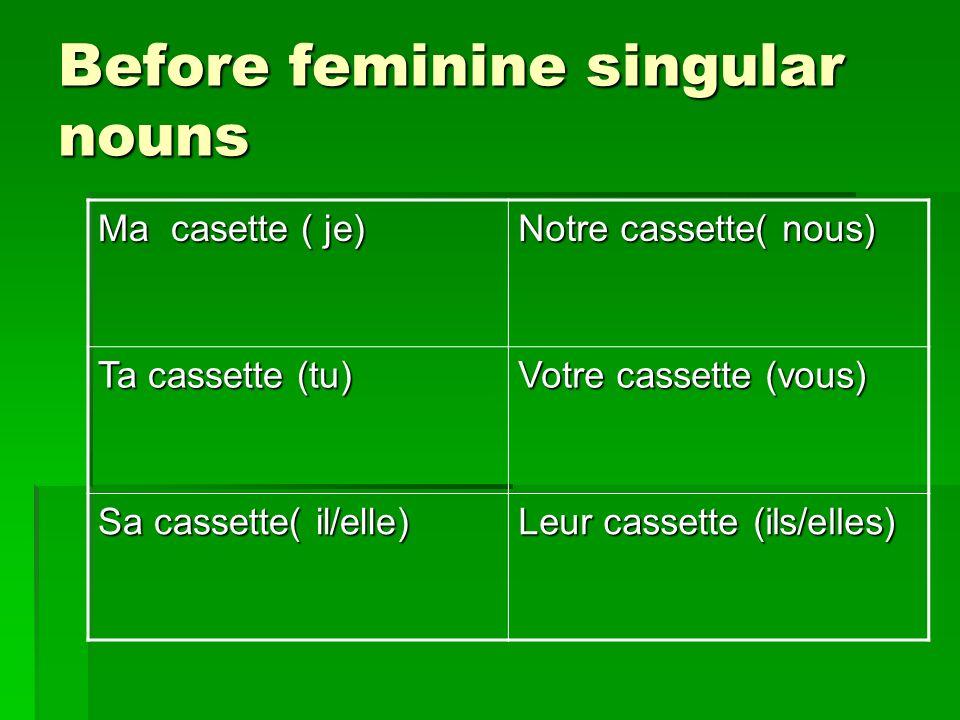 Before feminine singular nouns