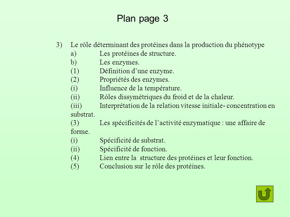Plan page 3 3) Le rôle déterminant des protéines dans la production du phénotype. a) Les protéines de structure.