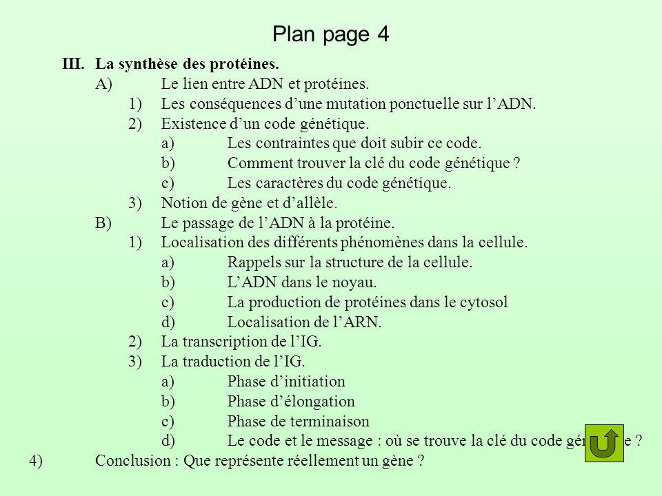 Plan page 4 III. La synthèse des protéines.