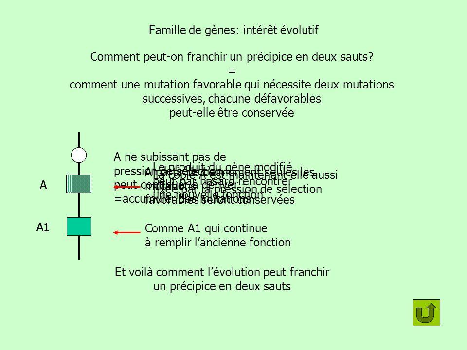 Famille de gènes: intérêt évolutif