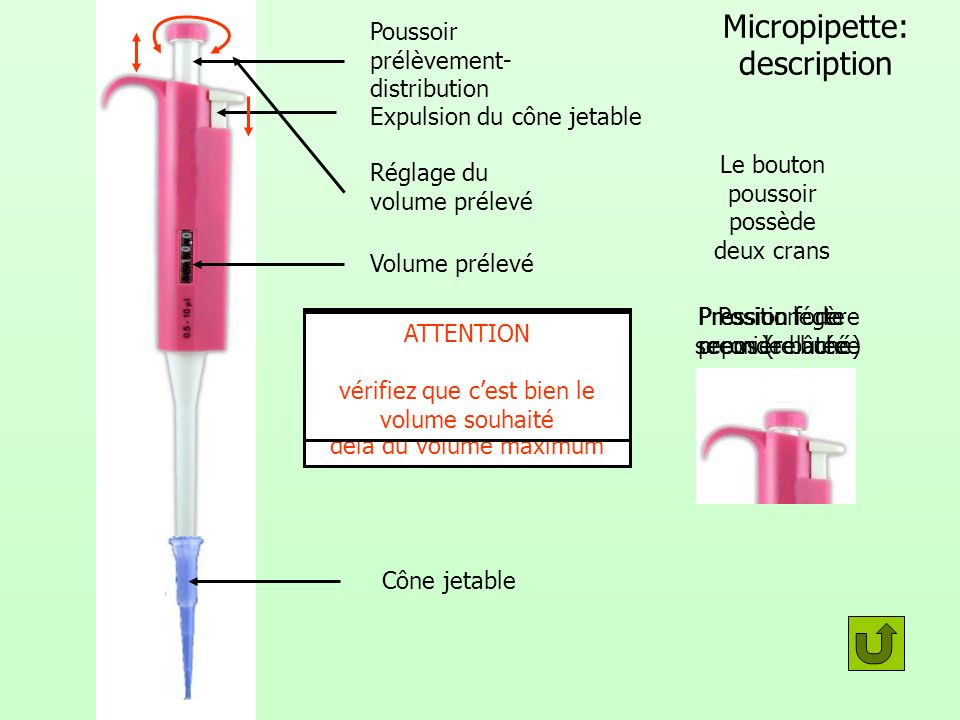 Micropipette: description
