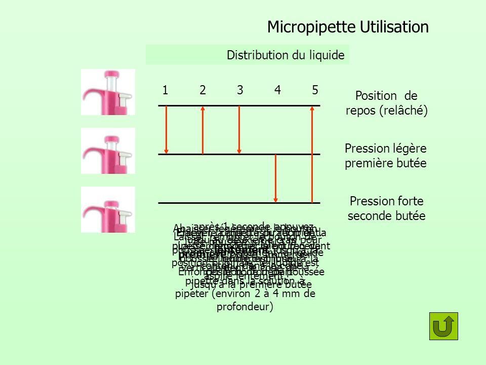 Micropipette Utilisation