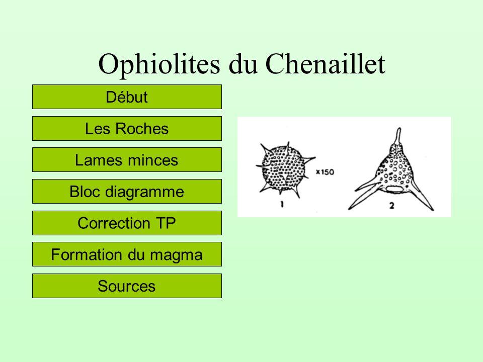Ophiolites du Chenaillet