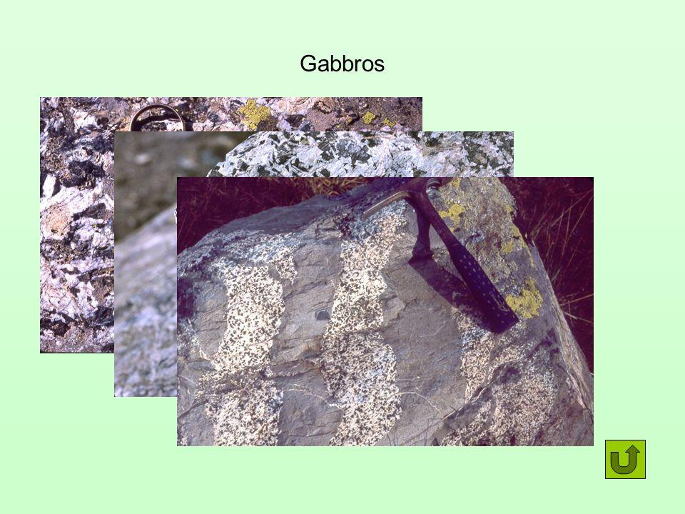 Gabbros