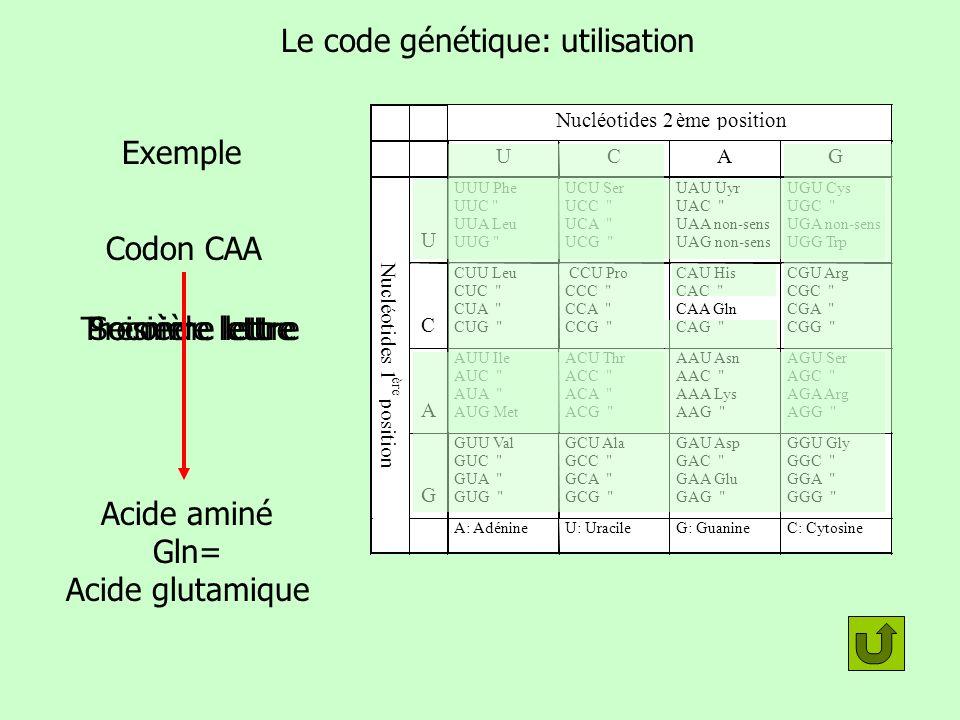 Le code génétique: utilisation
