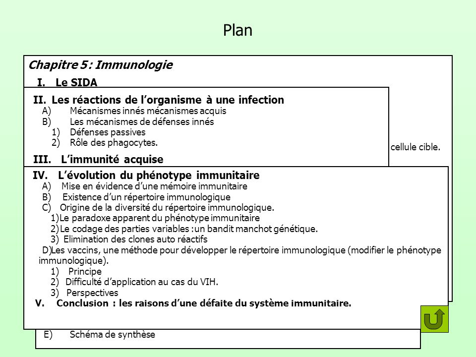 Plan Chapitre 5 : Immunologie I. Le SIDA II.