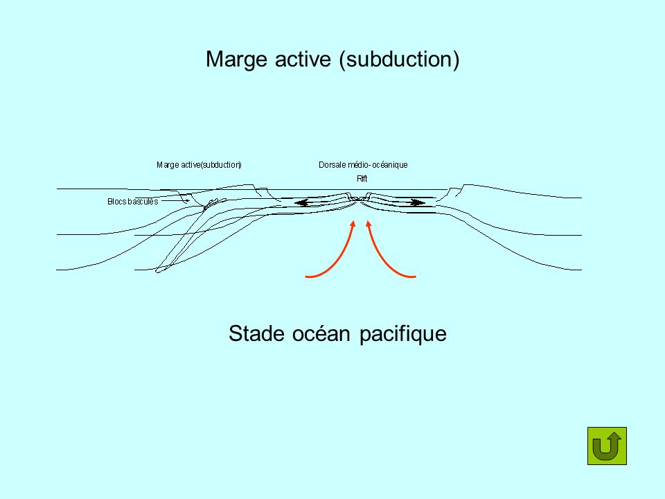 Marge active (subduction)