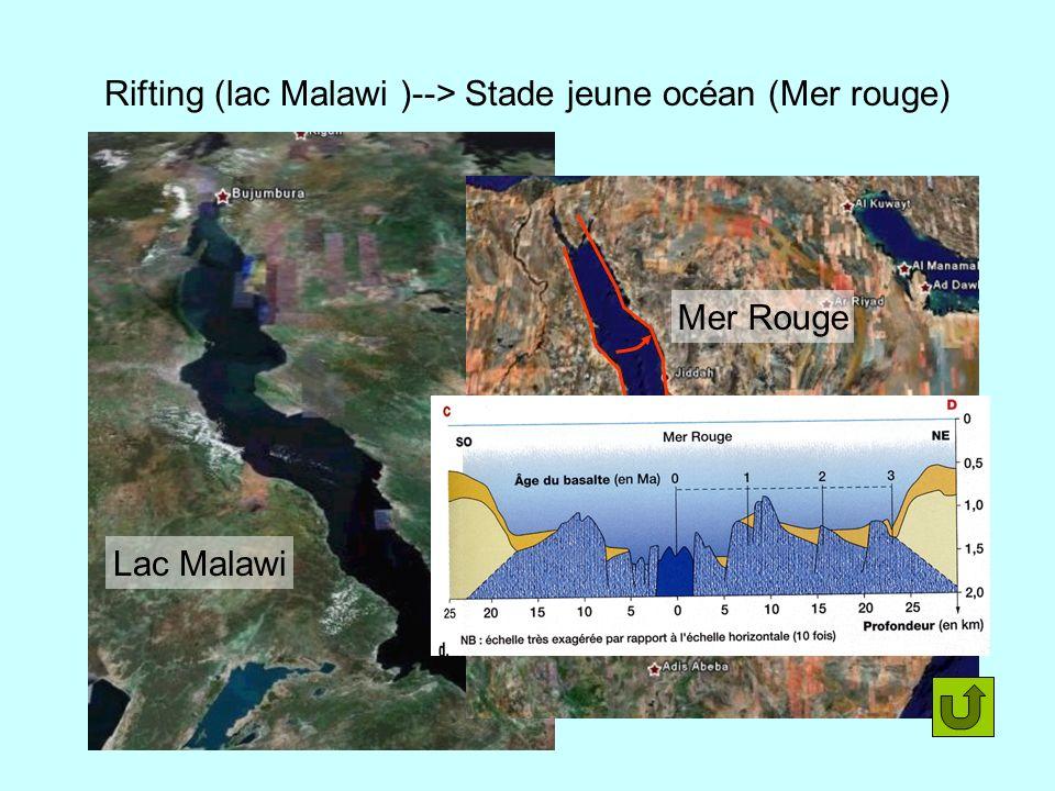Rifting (lac Malawi )--> Stade jeune océan (Mer rouge)